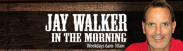 Jay-walker-in-the-morning